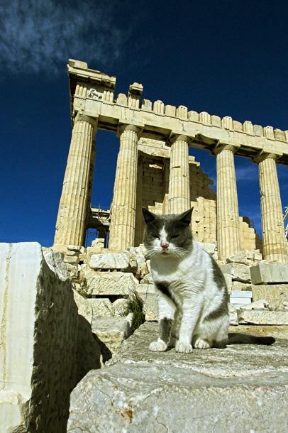http://www.kitrossky.org/Athens/Acropolis/img_1026-01.jpg